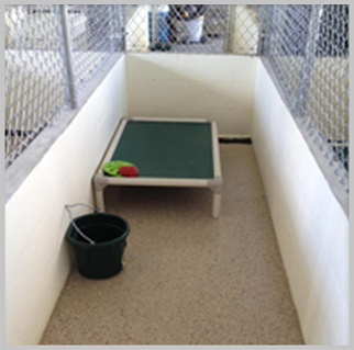 Basic Kennel